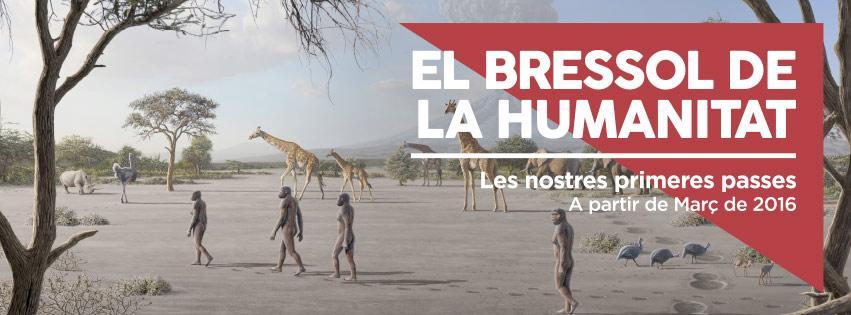 """Estudi De L'accessibilitat A L'exposició  """" El Bressol De La Humanitat"""" Cosmo-Caixa"""